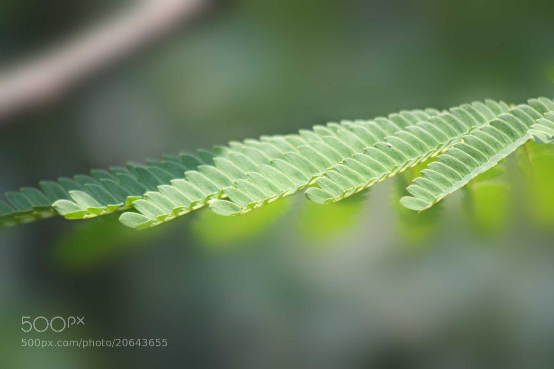 Photograph Cantilever by Sivakumar Gopalakrishnan on 500px