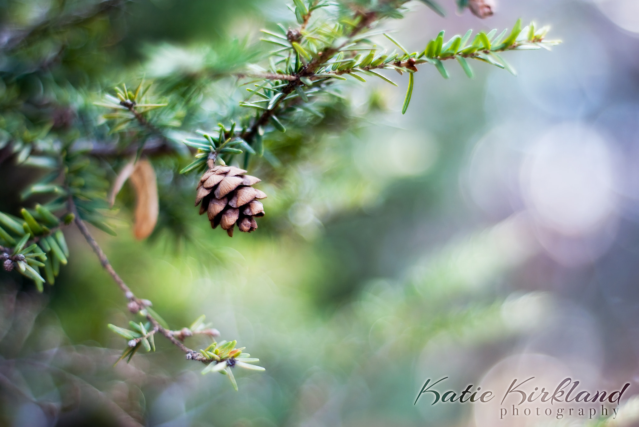Photograph Little Cone by Katie Kirkland on 500px