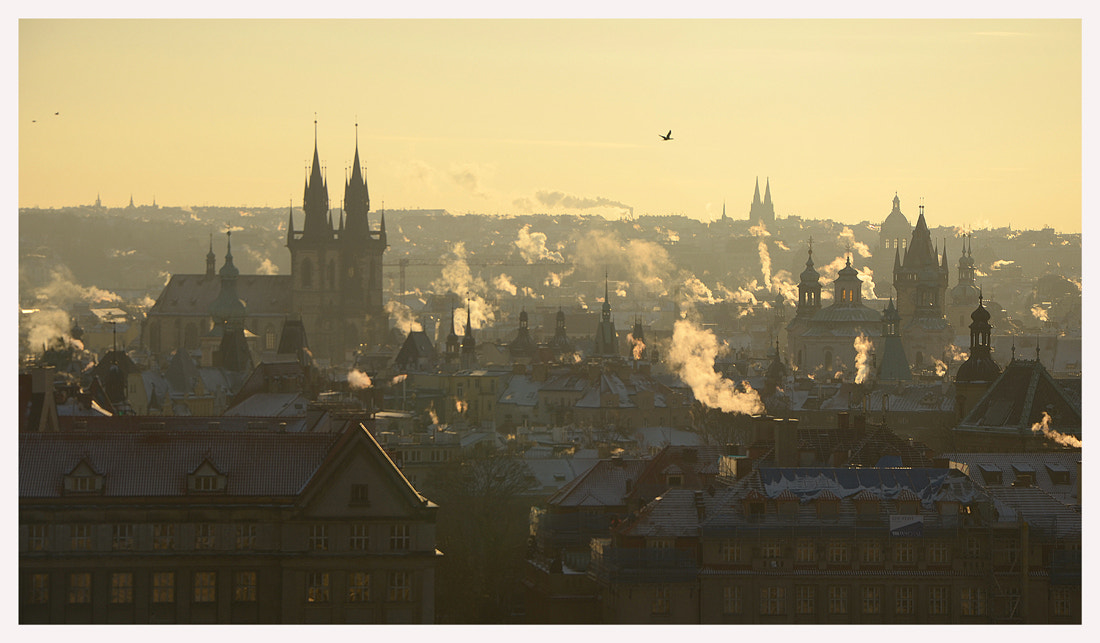 Photograph winter morning in Prague by Julie Riquiqui on 500px
