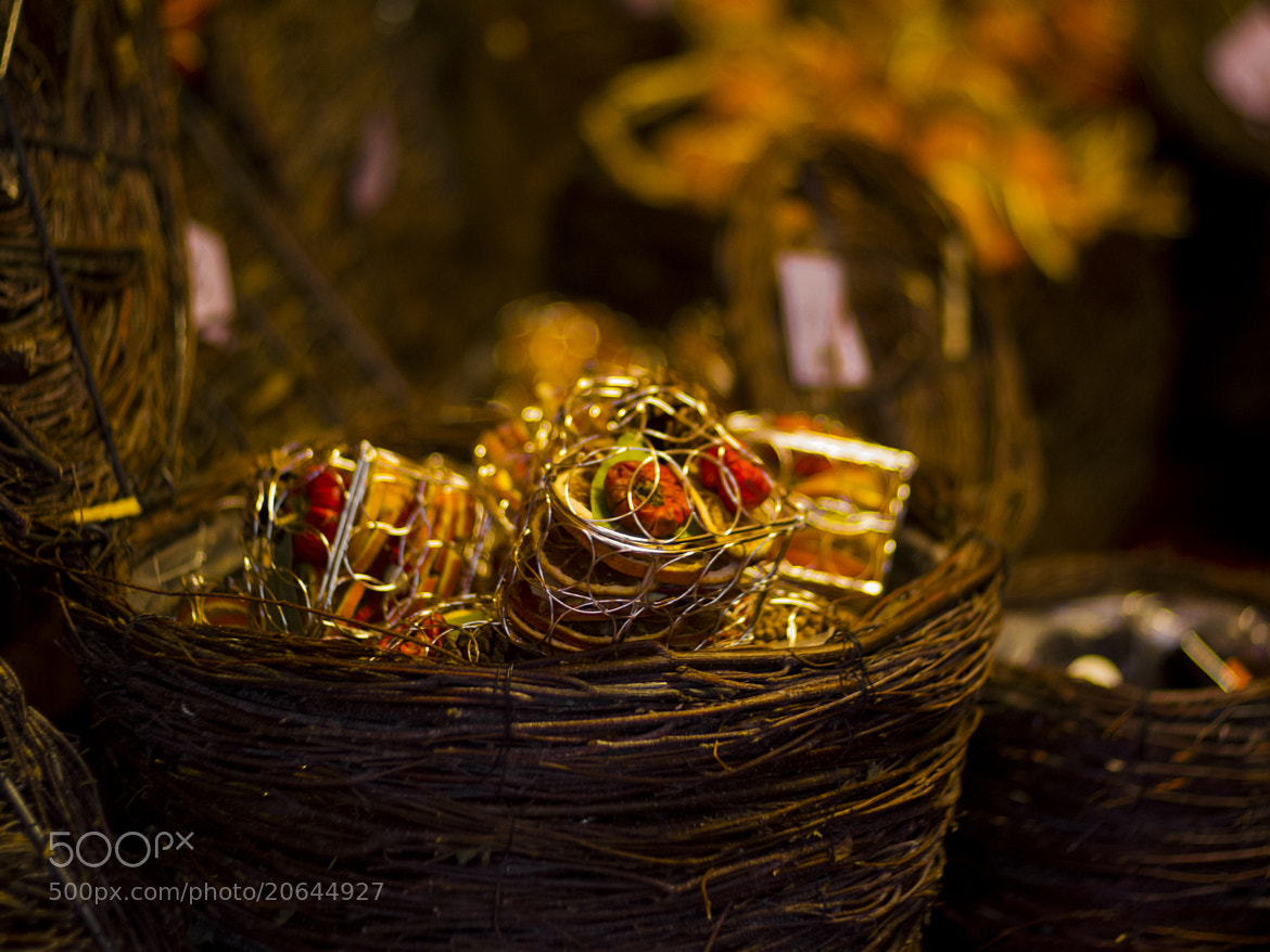 Photograph Winter Basket by Rob Searle on 500px