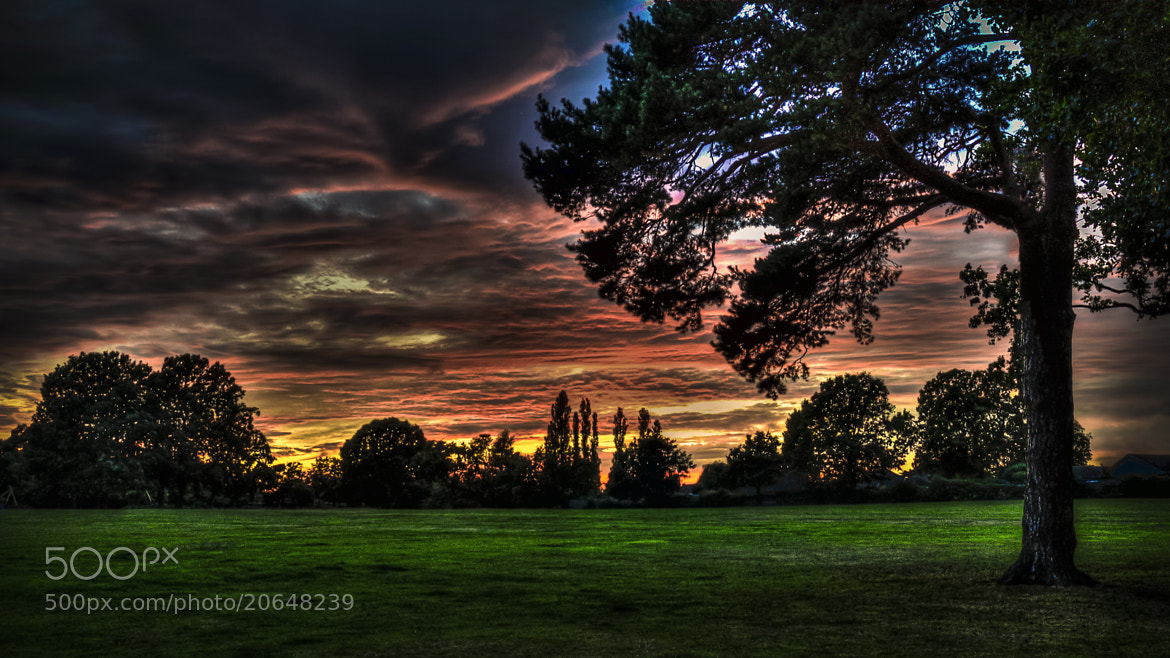 Photograph Park Field Sunset by Mark Shoesmith on 500px