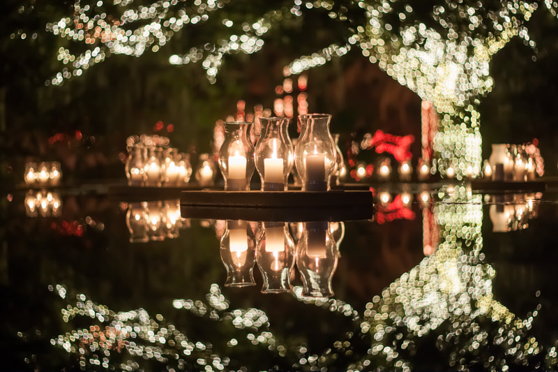 Photograph Nights of a Thousand Candles at Brookgreen Gardens  by George Boneillo on 500px