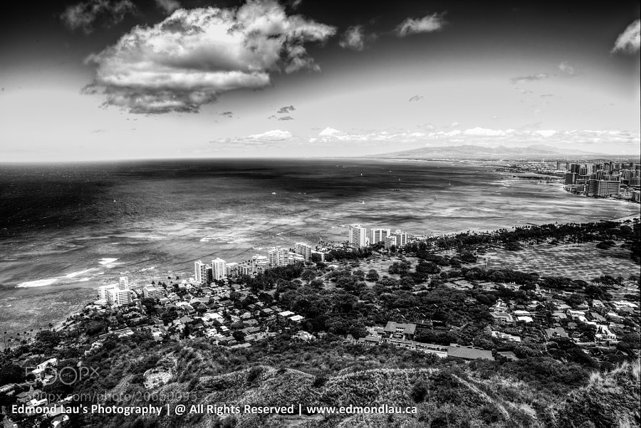 Honolulu B&W by Edmond Lau (elau)) on 500px.com