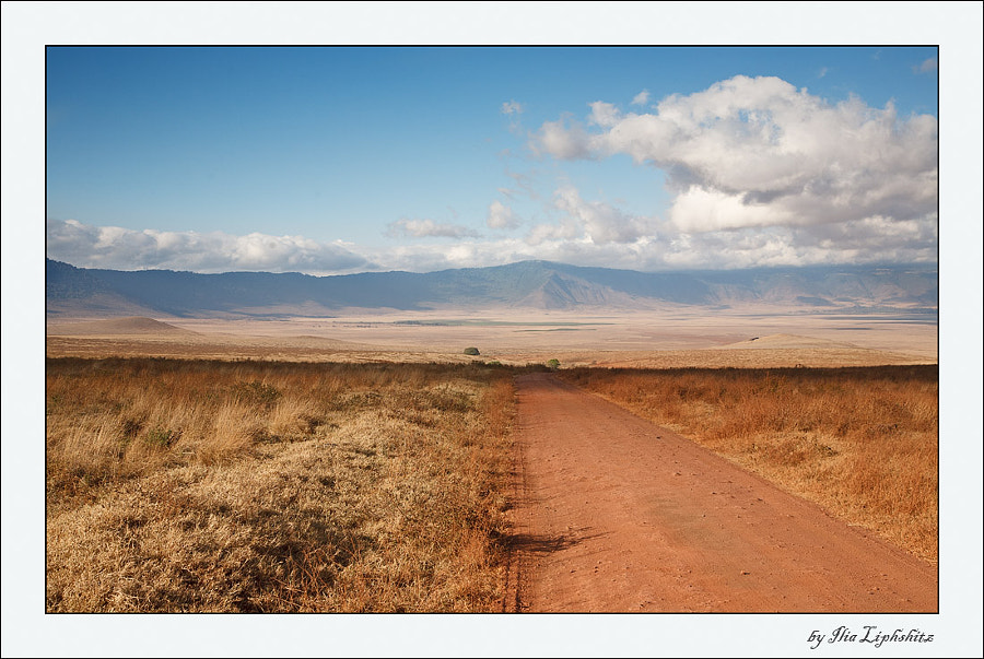The way to Ngorongoro