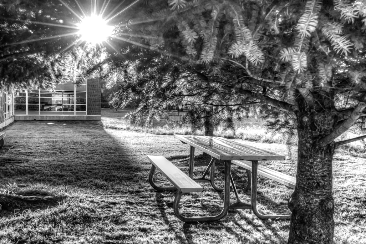 Photograph The Picnic Table by Joe Wilson on 500px