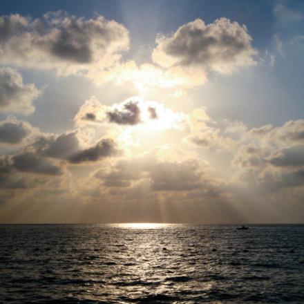 Rays of a Shy Sun