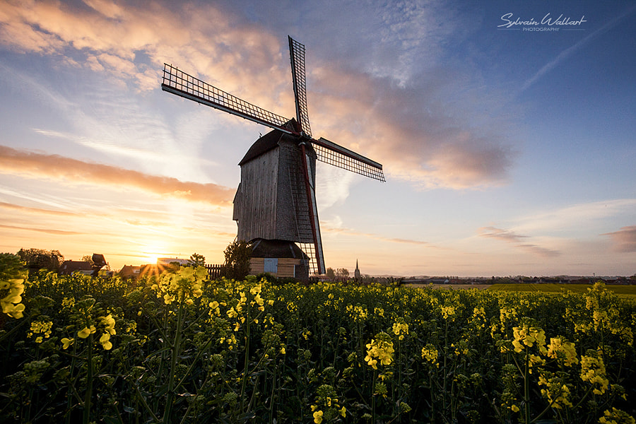 Windmill by Sylvain Wallart on 500px.com