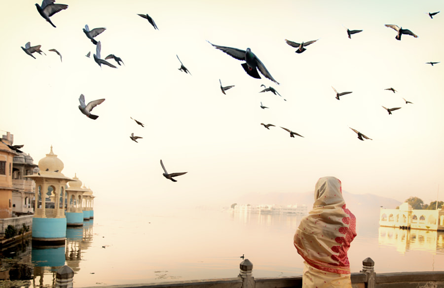 A woman in sari watching the sunrise in Udaipur lake by Gil Kreslavsky on 500px.com