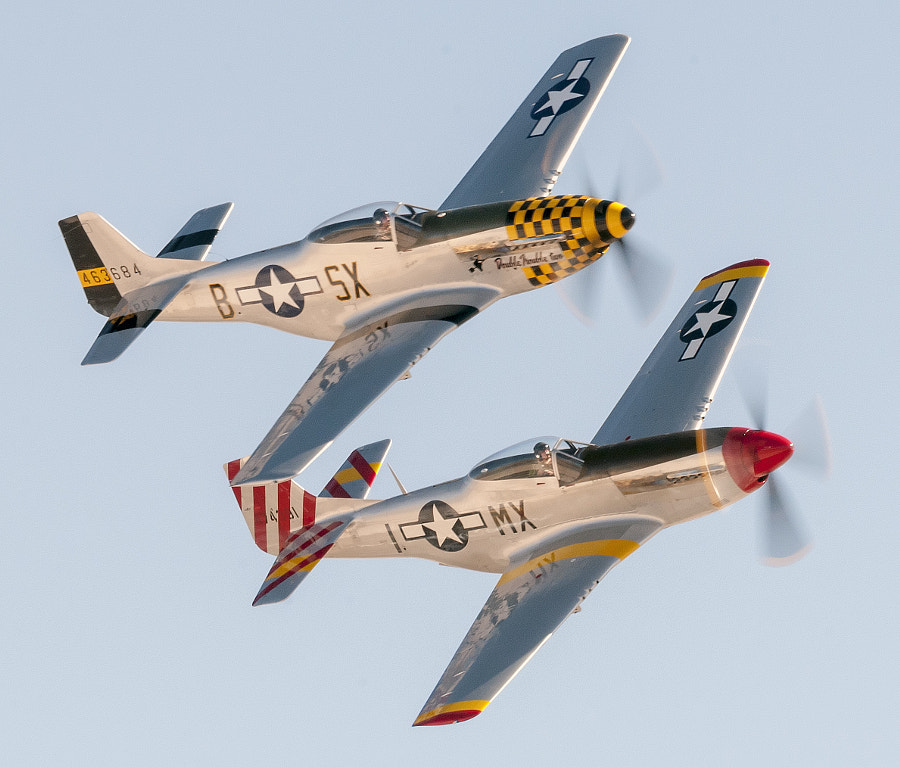 Twin P-51 Mustang aerobatic team, The Horsemen