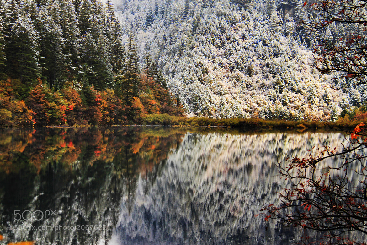 Photograph Mirror Lake by Jacky CW on 500px