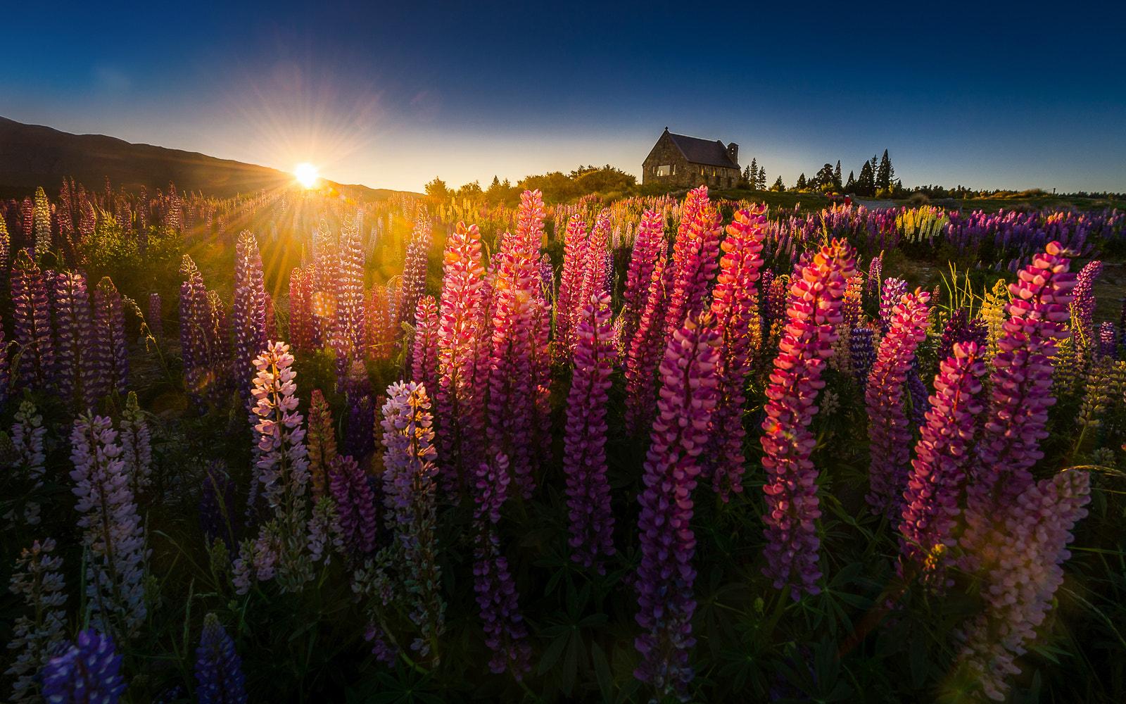 Photograph Good morning NZ by Coolbiere. A. on 500px