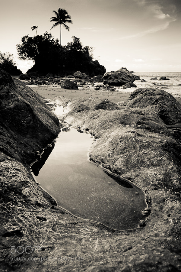 Exposed rocks during low tide in Nuqui Choco, Colombia. Beautiful place to visit.