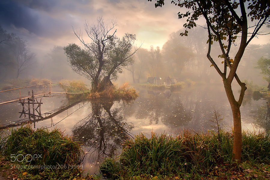 Photograph fairly tale therapy by Adam Dobrovits on 500px