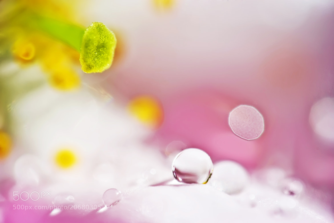 Photograph Drop by Lubomir Marcak on 500px