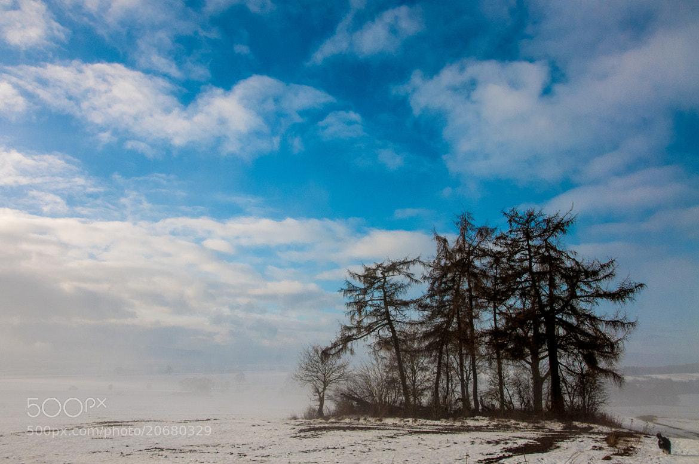 Photograph Winterlandschaft by Michael Ramm on 500px