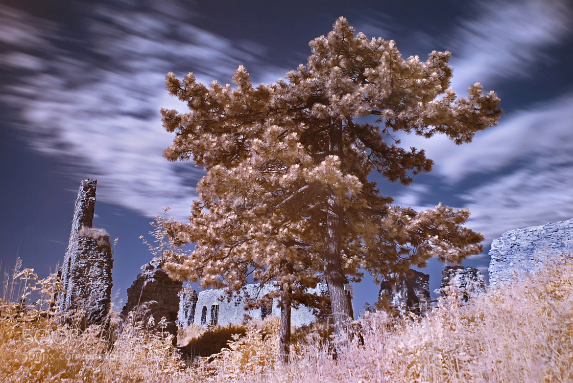 Photograph IR by Lubomir Marcak on 500px