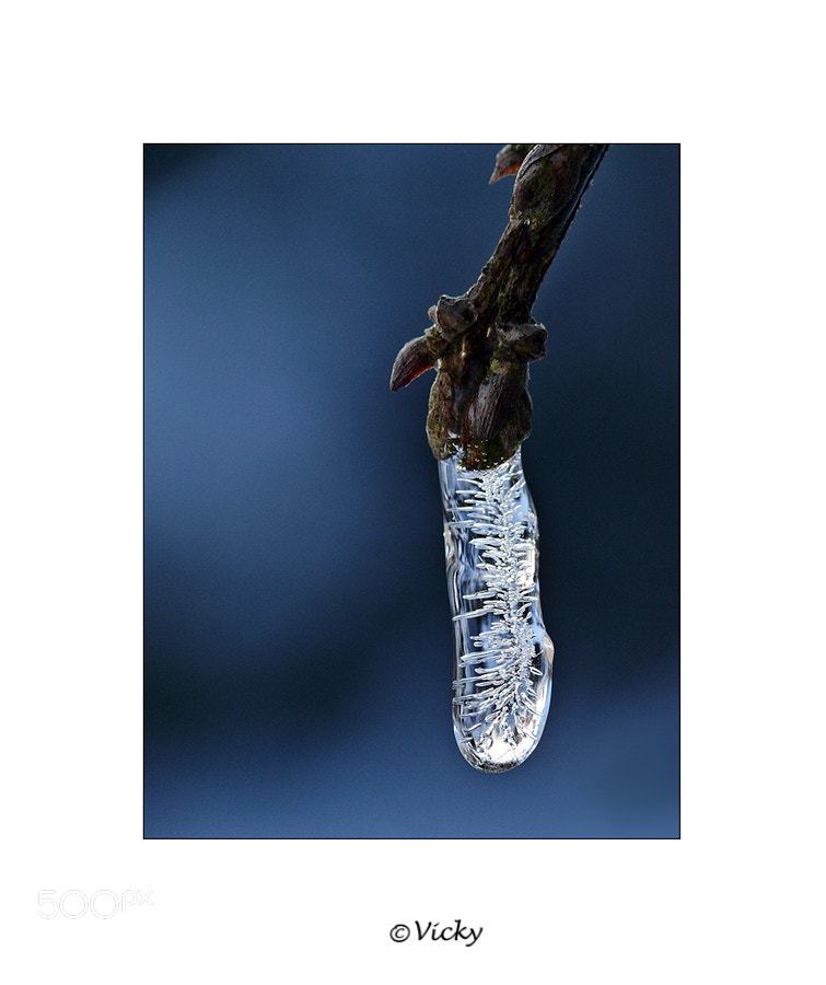 Photograph frozen drop by Vicky Dens on 500px