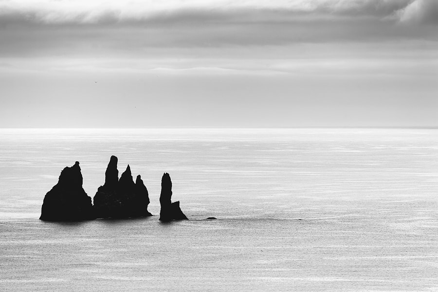 The Rocks And The Nordic Sea