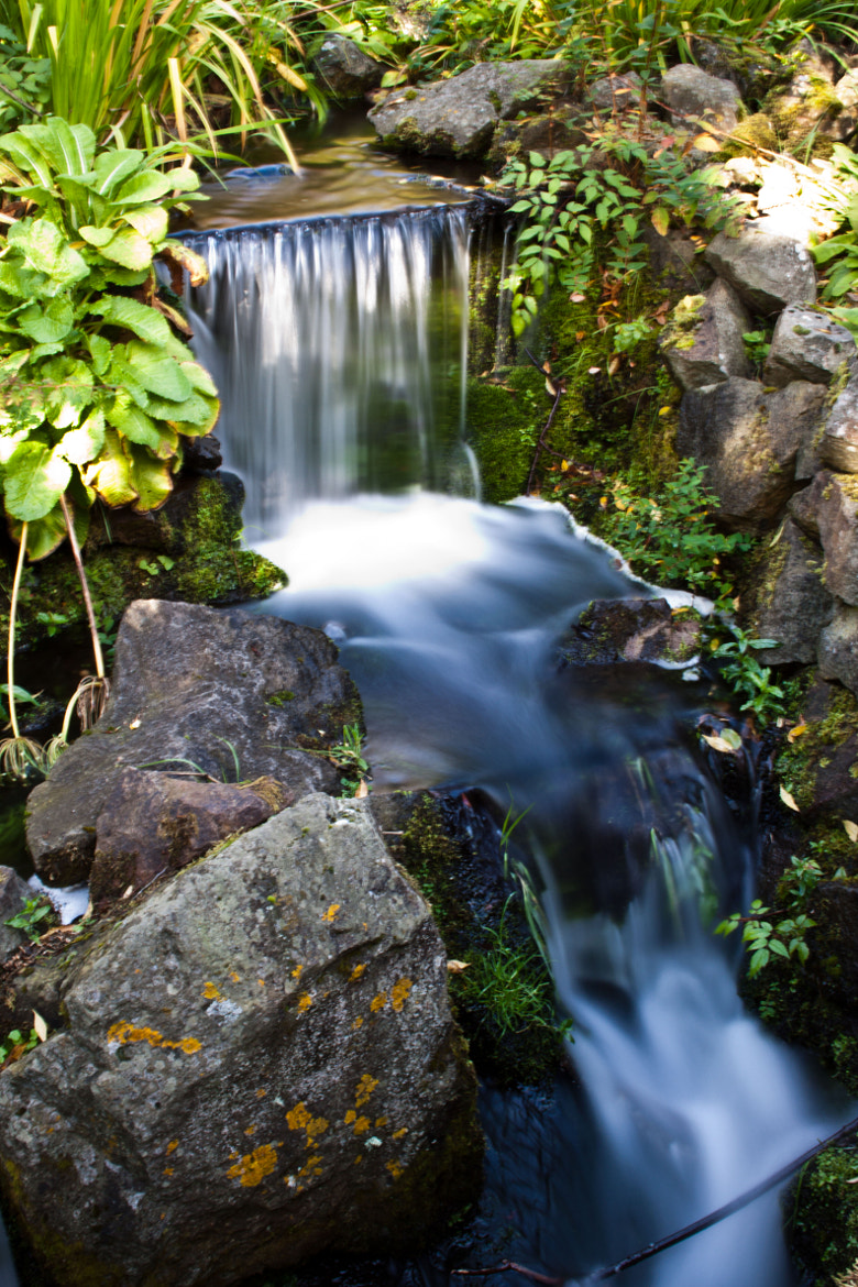 Photograph Waterfall in Botanic Garden, Edinburgh by Monika Putelbergier on 500px