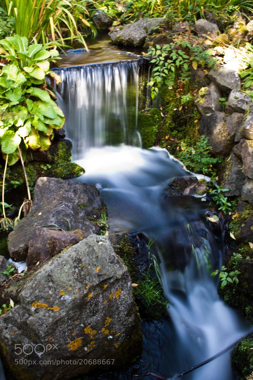 Photograph Waterfall in Botanic Garden, Edinburgh by Monika Wadowska on 500px
