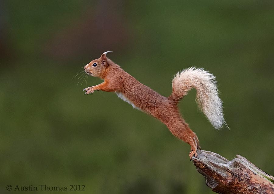 The balancing act...