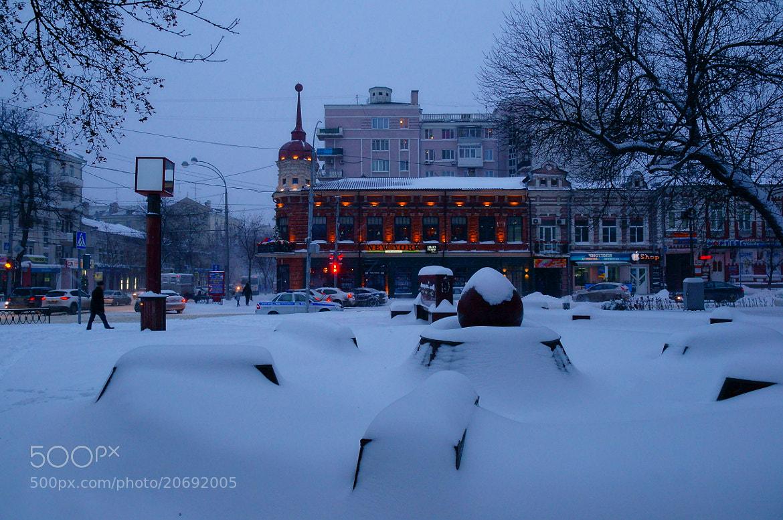 Photograph Winter morning by Grigory Nesvetaev on 500px