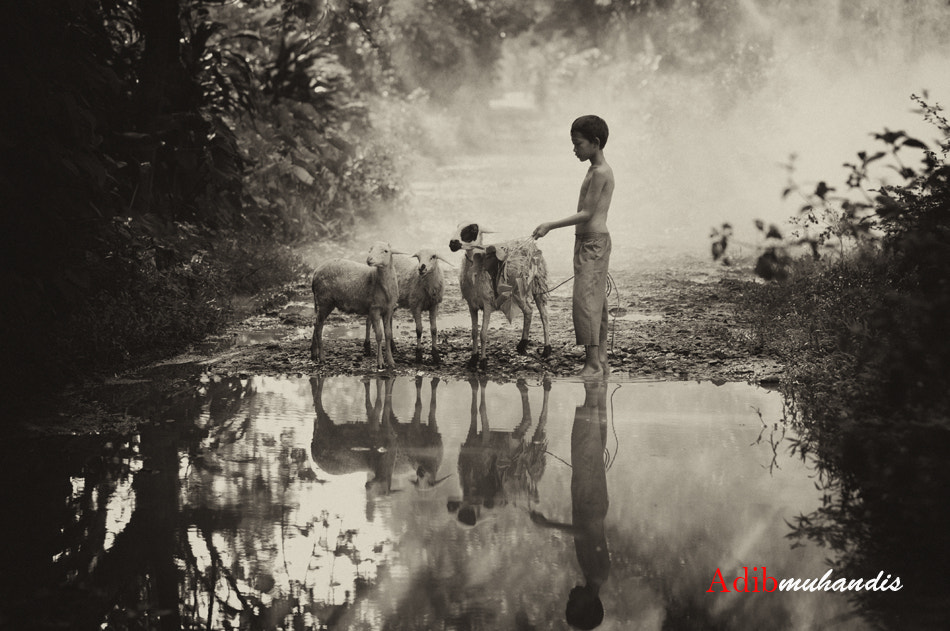Photograph My Best Friends.... by adib muhandis on 500px