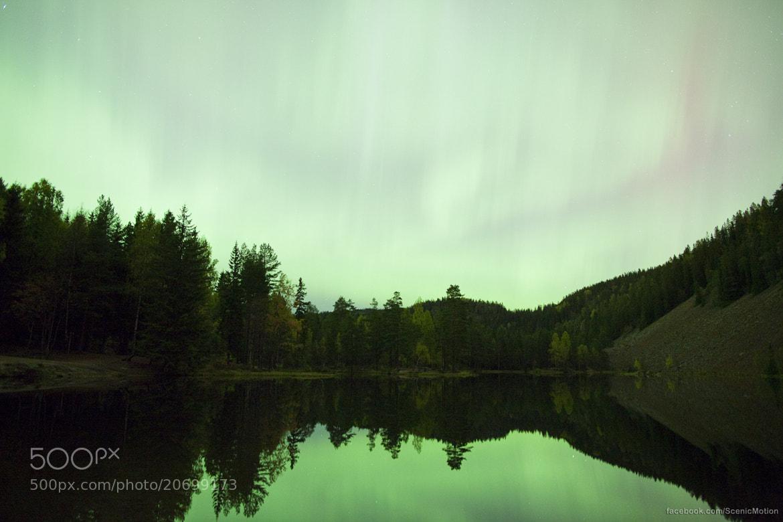 Photograph Aurora Borealis by Morten Berg on 500px