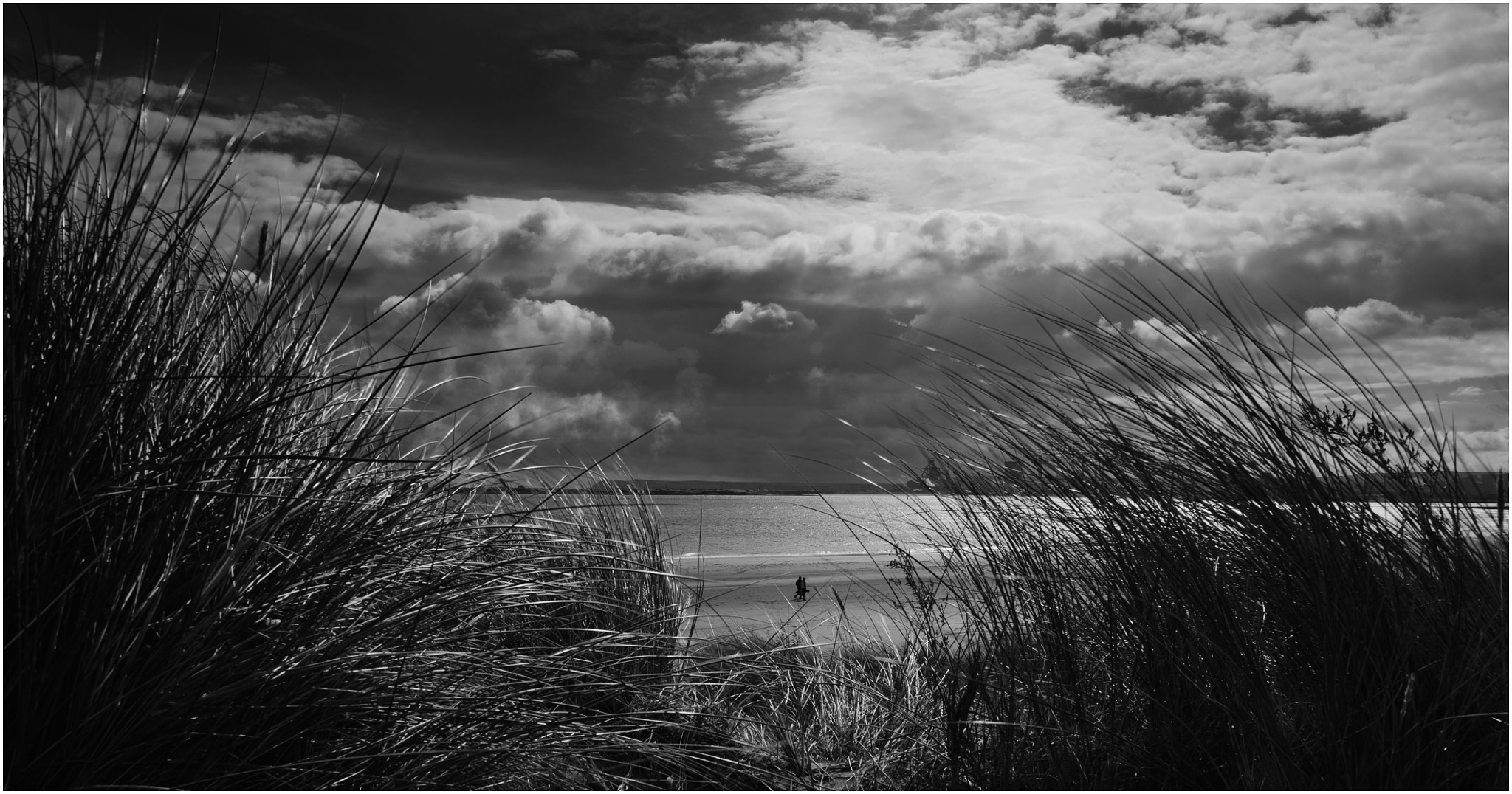 Photograph Walkers by David Atkinson on 500px
