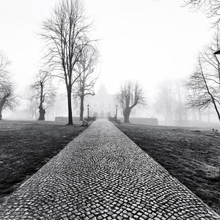 Weg zur Evenburg im Nebel