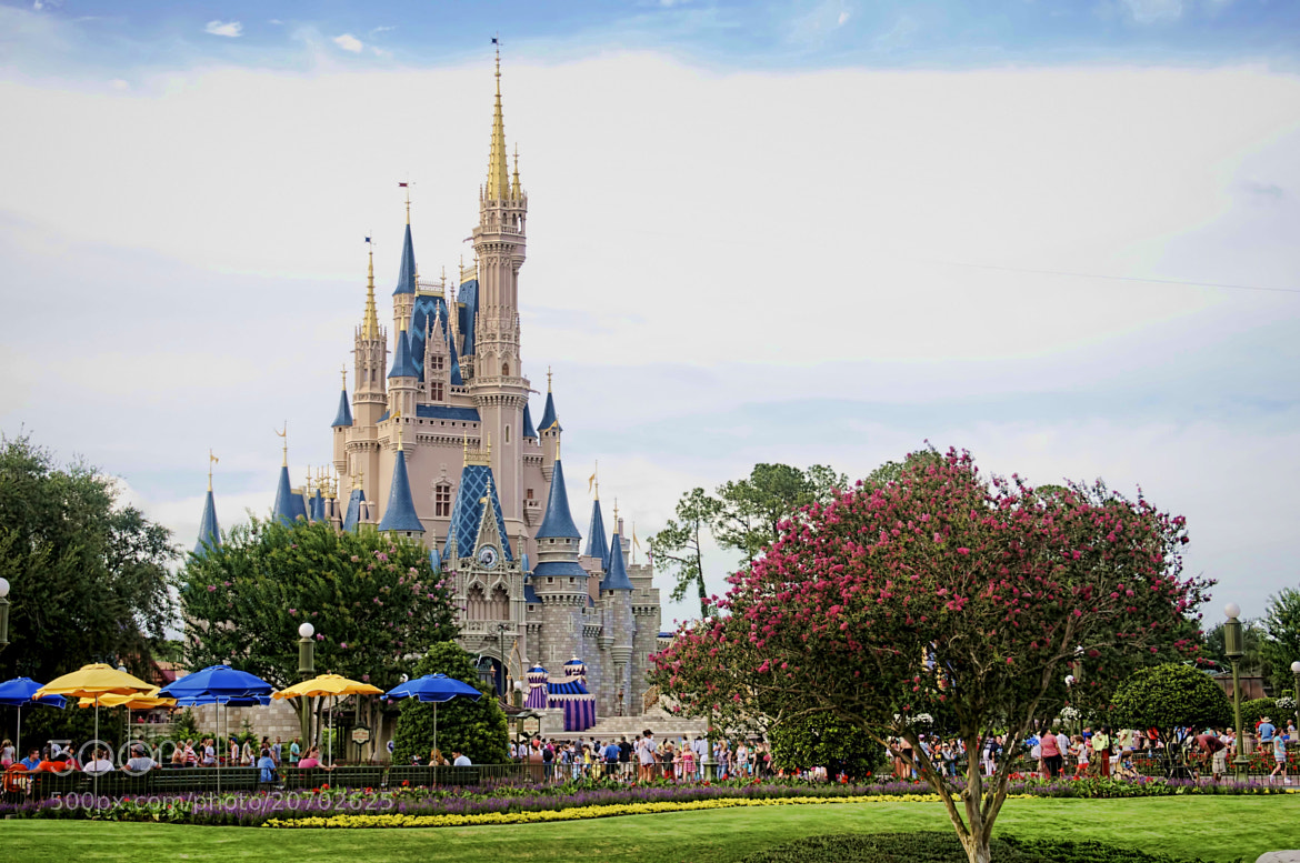 Photograph Cinderella's Castle by Eric Danley on 500px