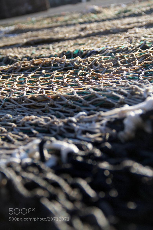 Photograph Dia de pesca by JON URRA on 500px