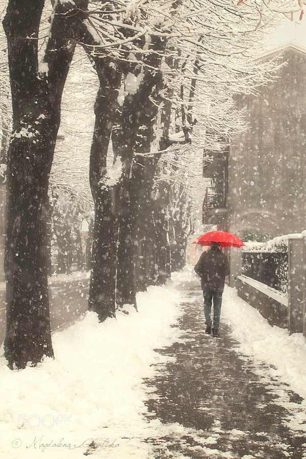 Photograph Snowbrella by Magdalena Ginalska on 500px
