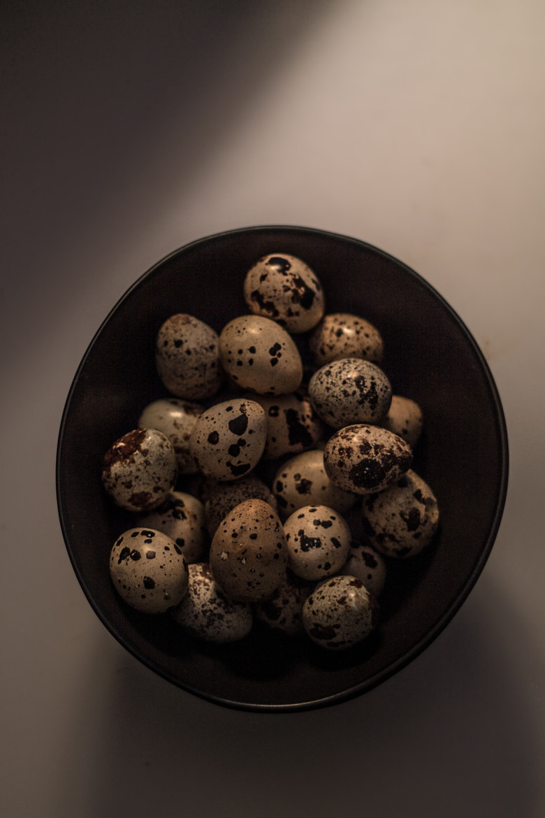 Photograph Quail Eggs by Matthew  Stebenne on 500px