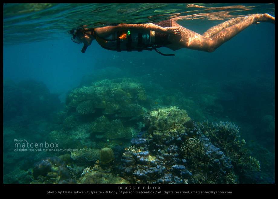 Photograph snorkeling@Mo ko Surin by Matcenbox  on 500px