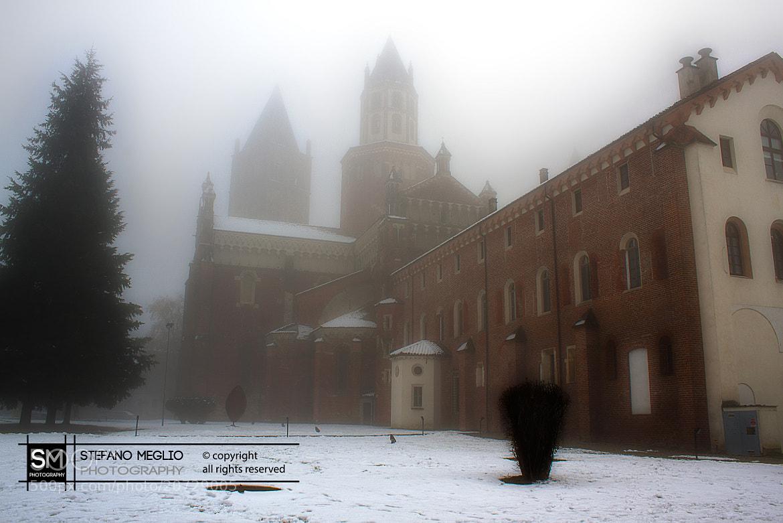 Photograph Vercelli  Basilica di Sant' Andea 1 by Stefano Meglio on 500px