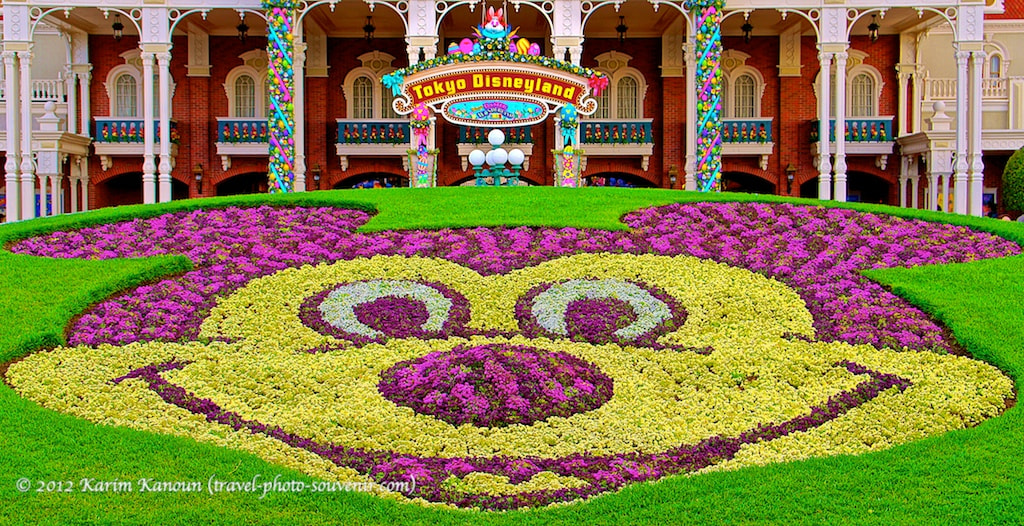 Photograph Mickey Mouse with flowers in Disneyland Tokyo by Karim Kanoun on 500px