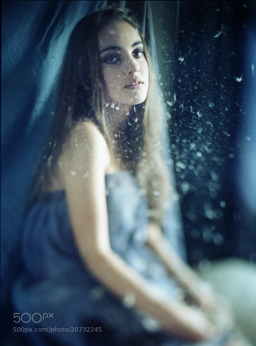 Photograph Owlet 2 by Furka Ishchuk-Paltseva on 500px