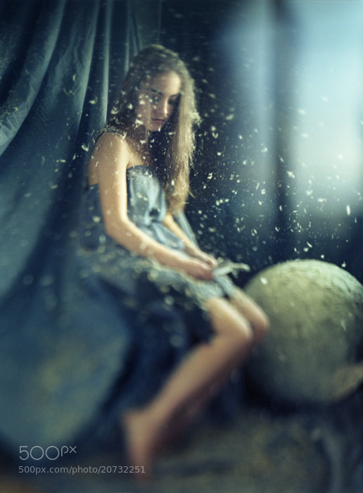 Photograph Owlet by Furka Ishchuk-Paltseva on 500px