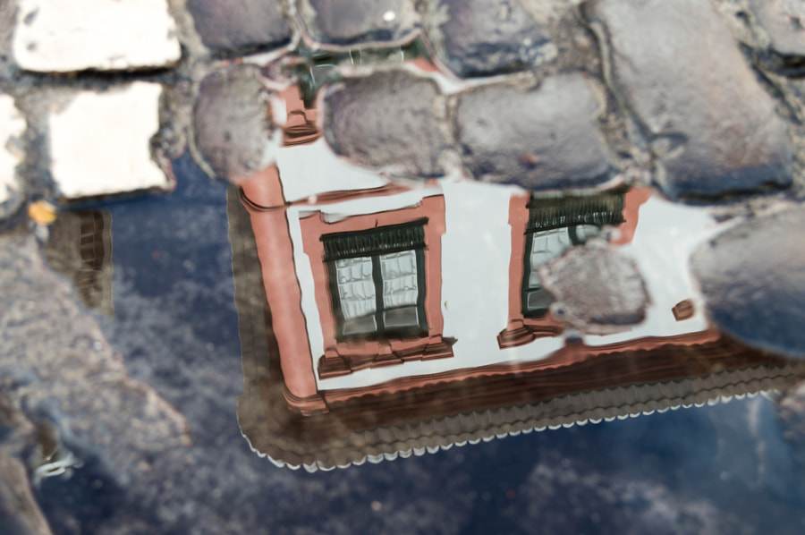 Detail through Puddle by Tiago Ormonde on 500px.com