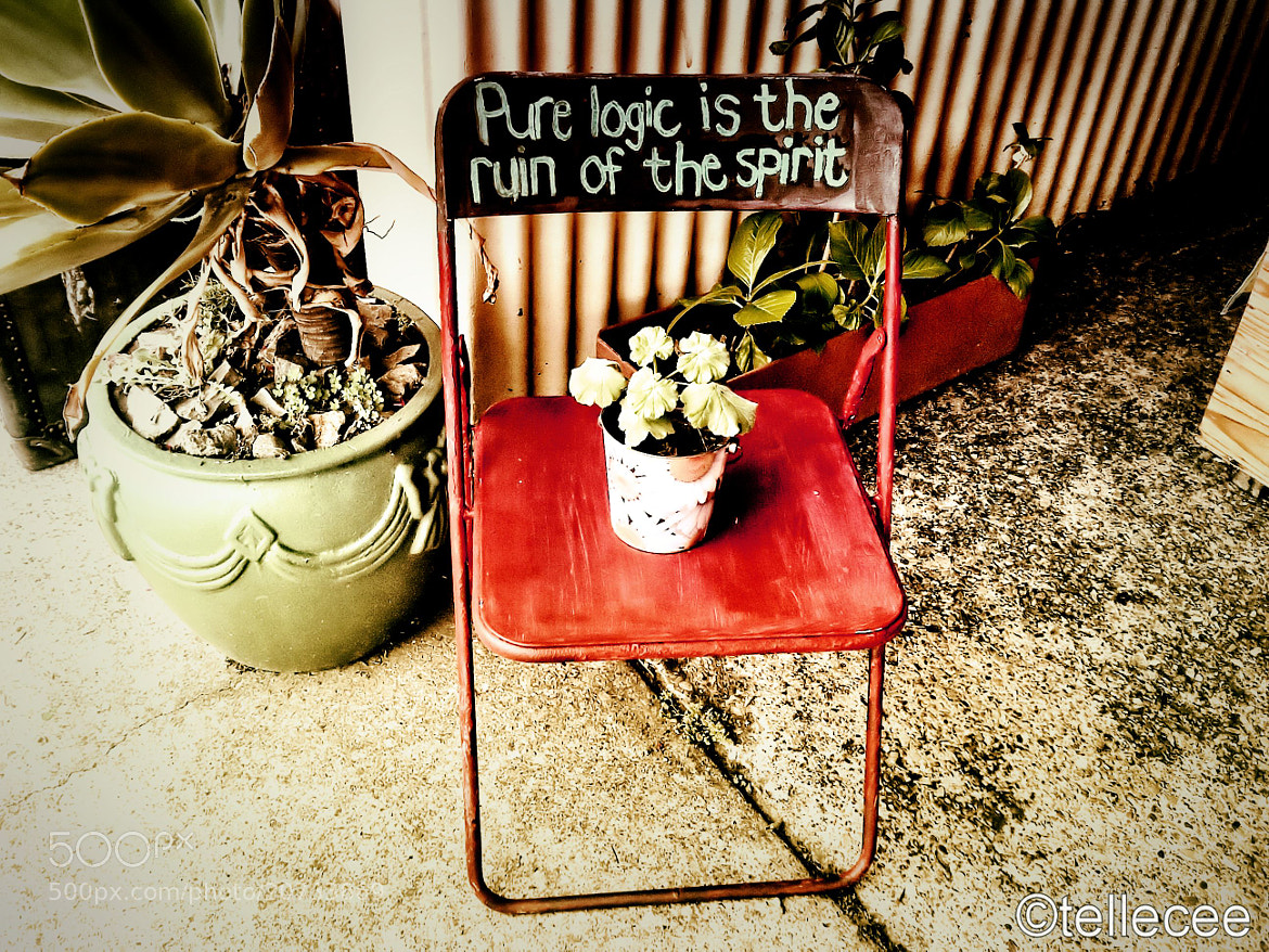 Photograph Wisdom chair by Tian Cronje on 500px
