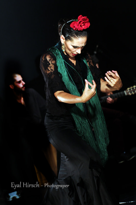 Photograph Flamenco by eyal hirsch on 500px