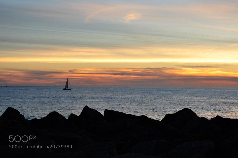 Photograph Sailing at sunset by José Eusébio on 500px