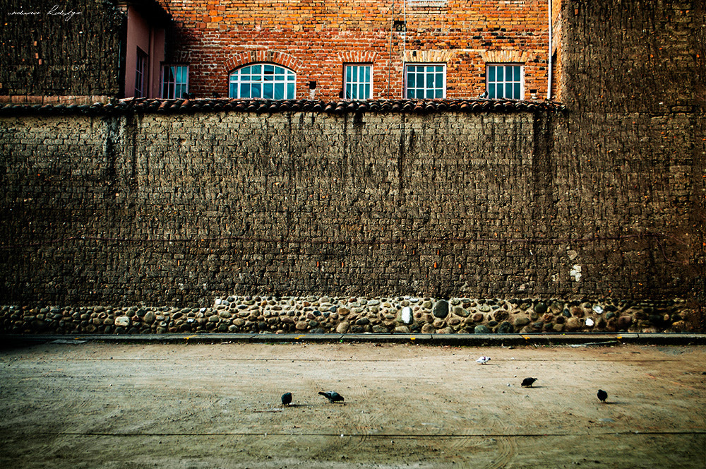 "Photograph ""the wall"" by Andres Hidalgo on 500px"
