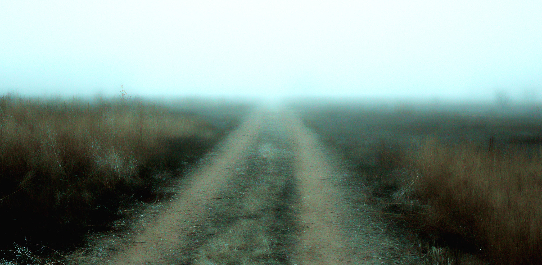 Photograph Road by Johnny Gomez on 500px
