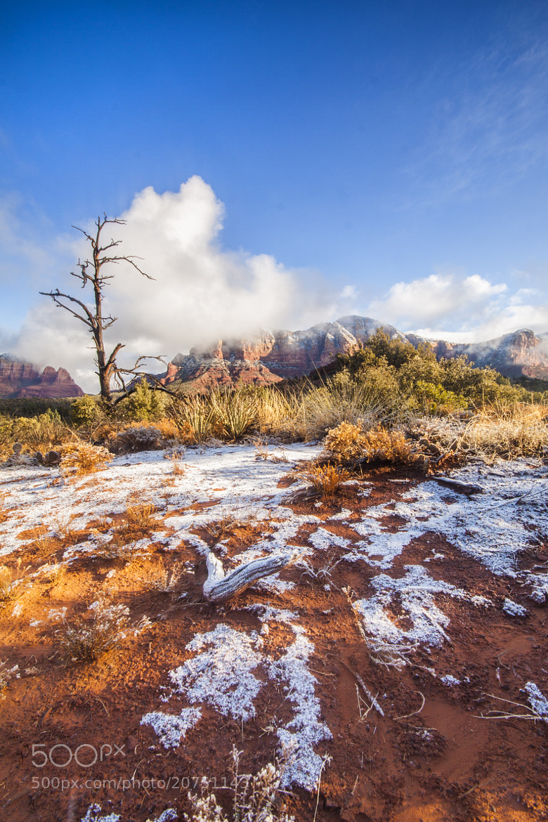 Photograph Snow in Sedona by Samir Mohanty on 500px