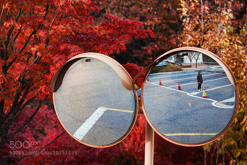 Photograph Mirror by TY Kim on 500px
