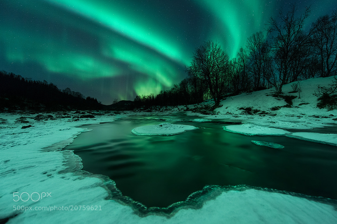 Photograph River Lights by Arild Heitmann on 500px