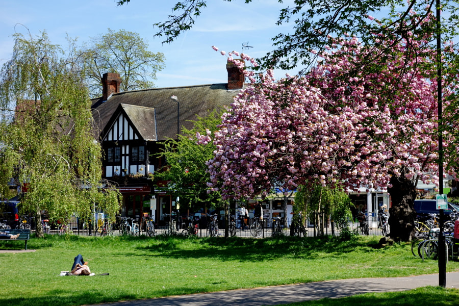 Acton Green Common Park, London, UK by Sandra on 500px.com