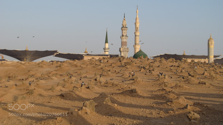 Photograph Baghee by amir yazdani on 500px